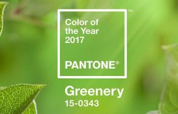 mukorom.hu - 2017-es év színe: greenery!