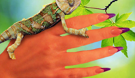 Best Nails - Los geles Camaleón para verdaderas camaleónicas!