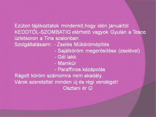 050ed91d27 Műkörmös képek - Kovács Eszter - Menta zöld fehér - Zselés műköröm képek
