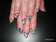 Best Nails - Erika zselés ezüst fekete cicás