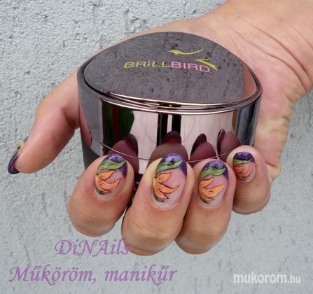 DiNails Szalon (Műköröm, manikűr, pedikűr)  - Dórának - 2011-08-02 12:04