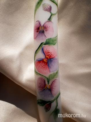 Kajti Szilvia - virágok - 2011-10-29 19:41