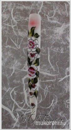 Palatin Tímea - Kockás rózsa - 2011-11-07 13:46