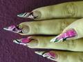 Pink kagylólap beépítve akril díszítéssel