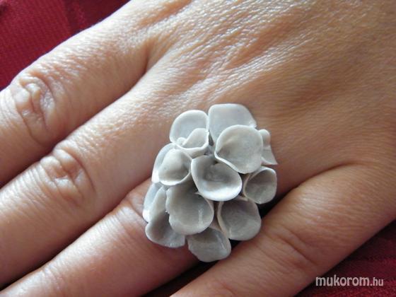 Antal Ildikó - Gyűrű - 2011-11-01 11:32