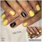 Sárga és szürke