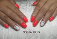 Seashell and neon