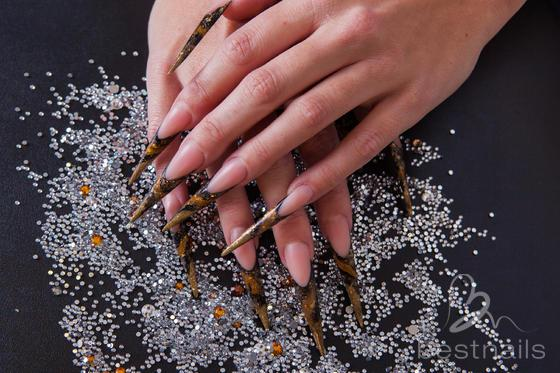 Angela haenen nail artist amsterdam for A touch of elegance salon