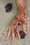 Klasszikus henna3