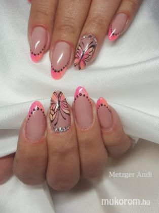 Bakosné Metzger Andrea - Butterfly - 2018-02-08 06:25