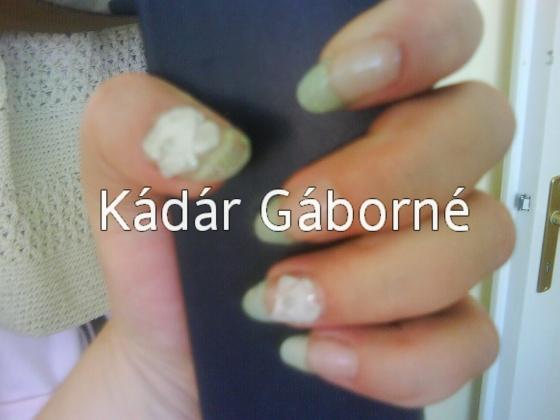 Kádár Gáborné - épített porcelán - 2009-07-22 00:27