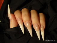 Best Nails - stiletto francia