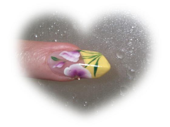 Szép Kriszta - virágok - 2011-03-15 11:23