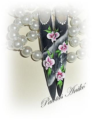 Palotásné Anikó - orchideák - 2011-03-16 20:01