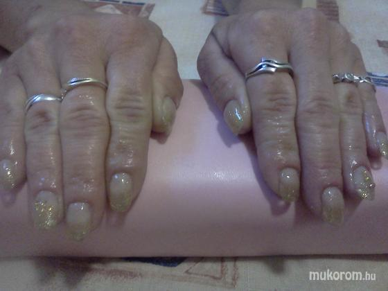 Viszokai Bettina - arany csillám - 2011-06-04 11:23