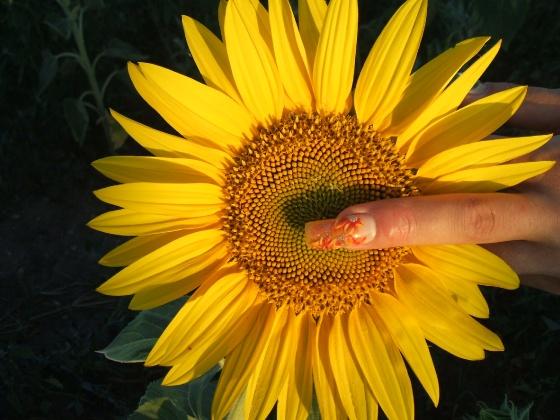 Kalmár Nikolett - 34 - 2009-08-30 19:21