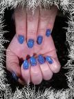 Karacsonyi kékség