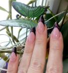 Best Nails - 76854