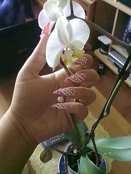 Andincia Nails, - . - 2010-05-05 11:37