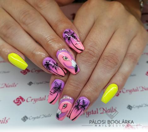 Pálosi Boglárka - flamingós - 2019-08-25 22:19