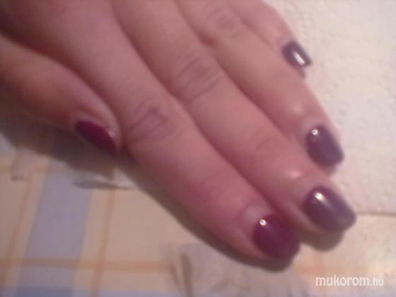 Dolonainé Szijj Gabriella/Nail Center - Pearlac 3 hetesen - 2011-04-16 10:41