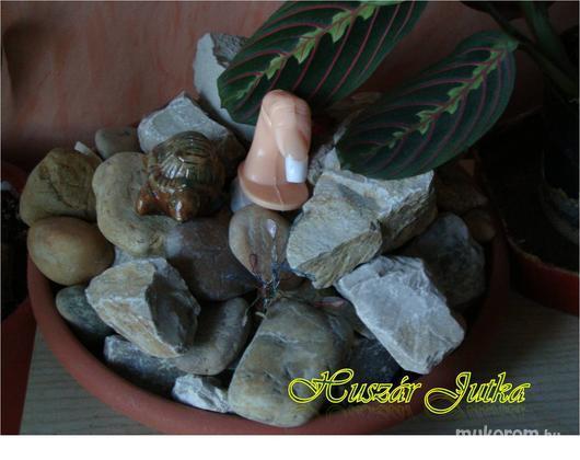 Huszár Jutka - Képzés előtti kocka - 2011-04-19 10:50