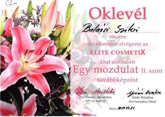 Balázsi Szilvia - oklevelem - 2011-07-26 18:57
