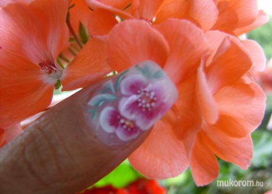 Havasi Erika - virágok - 2011-08-13 21:59
