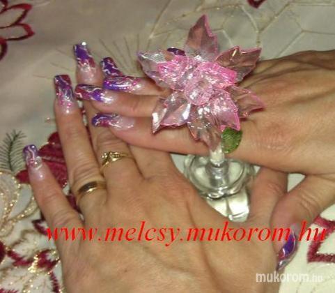 Molnárné Sz, Melinda - szines - 2011-12-17 20:35