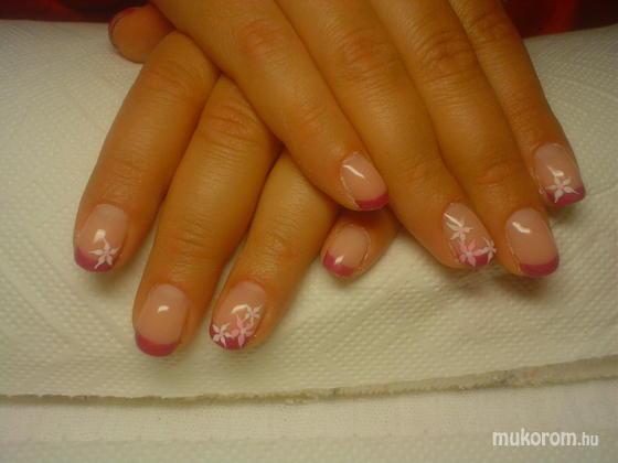 Németh Attiláné..*CsiLLa* - rózsaszín virágok - 2011-12-19 16:53