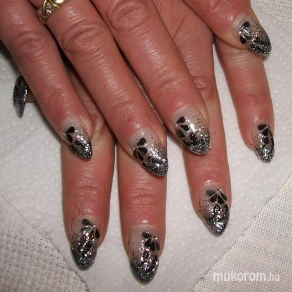 Bacskai Renáta - Fekete ezüst - 2011-12-30 15:27